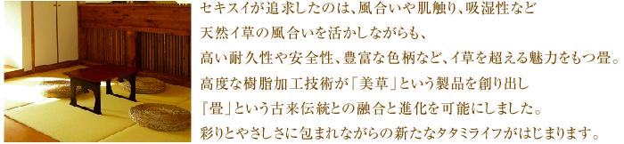 w-migusa_01